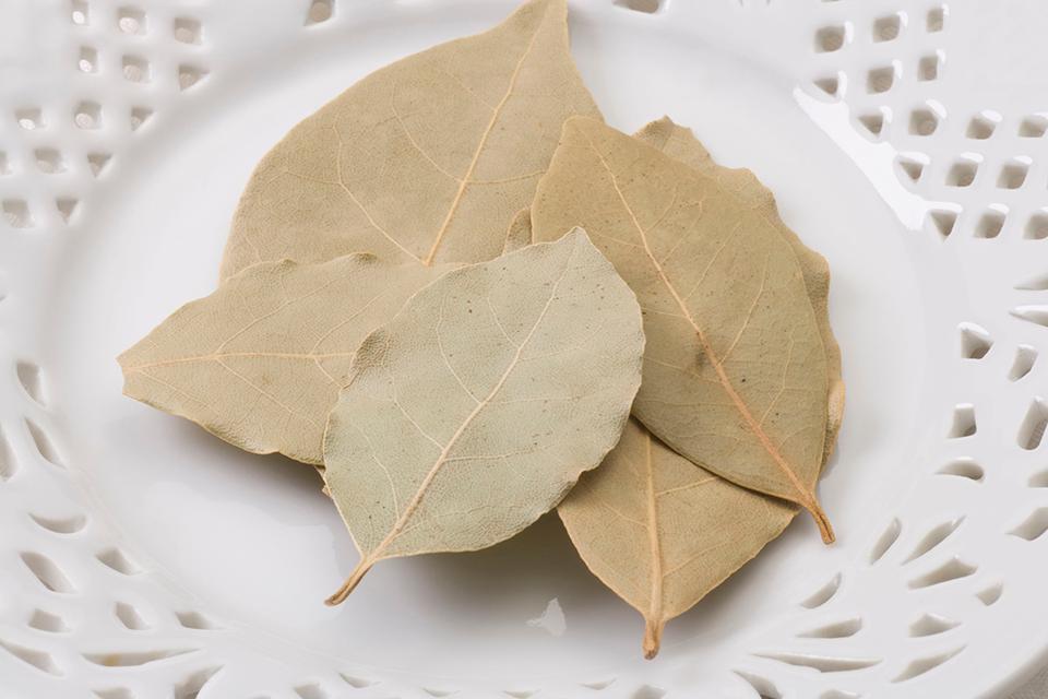 乾燥させたローリエの葉