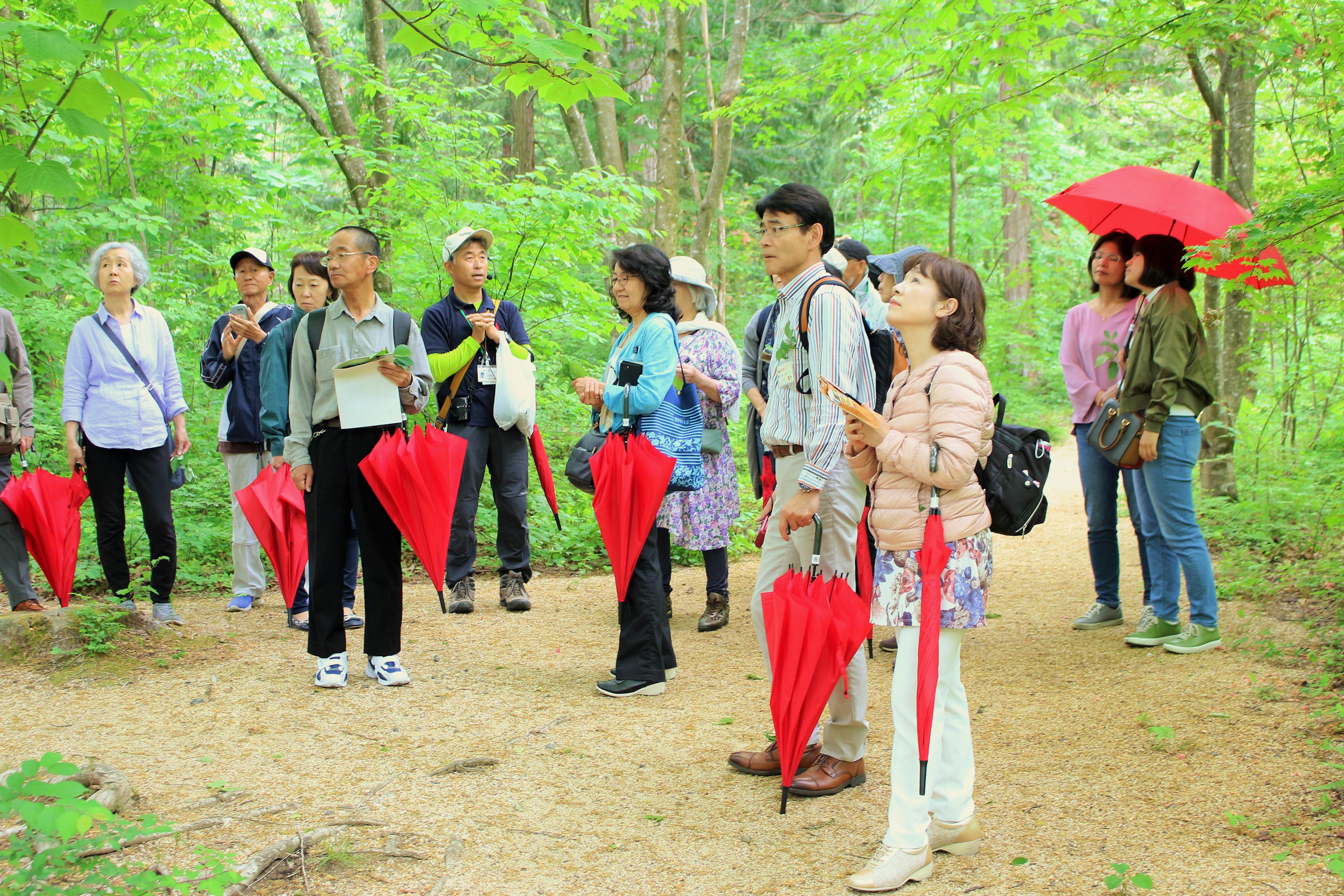 森散策2.JPG