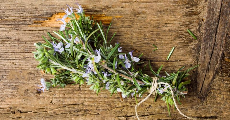 料理やアロマ、花束にして贈り物にも  使い方いろいろローズマリー一覧画像
