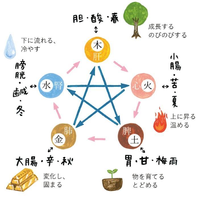 五行と五臓、五味、季節の対応図