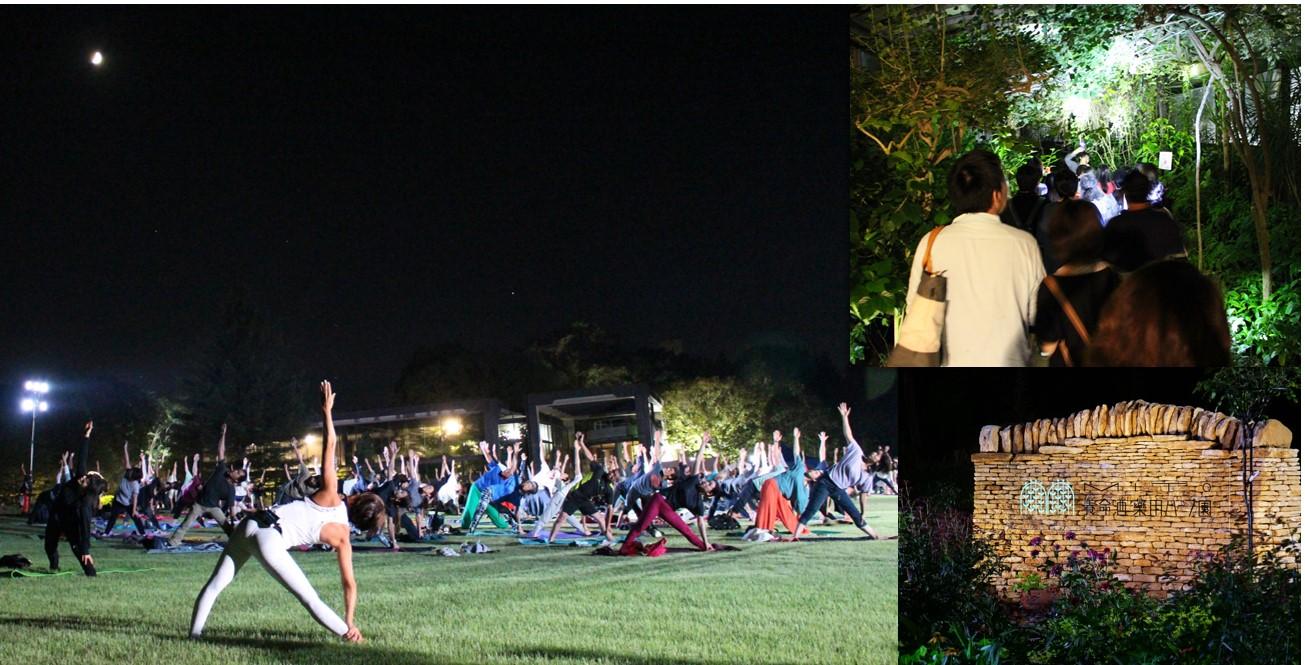 【開催しました】Night Botanical Park~植物と深呼吸する~@MITO養命酒薬用ハーブ園一覧画像