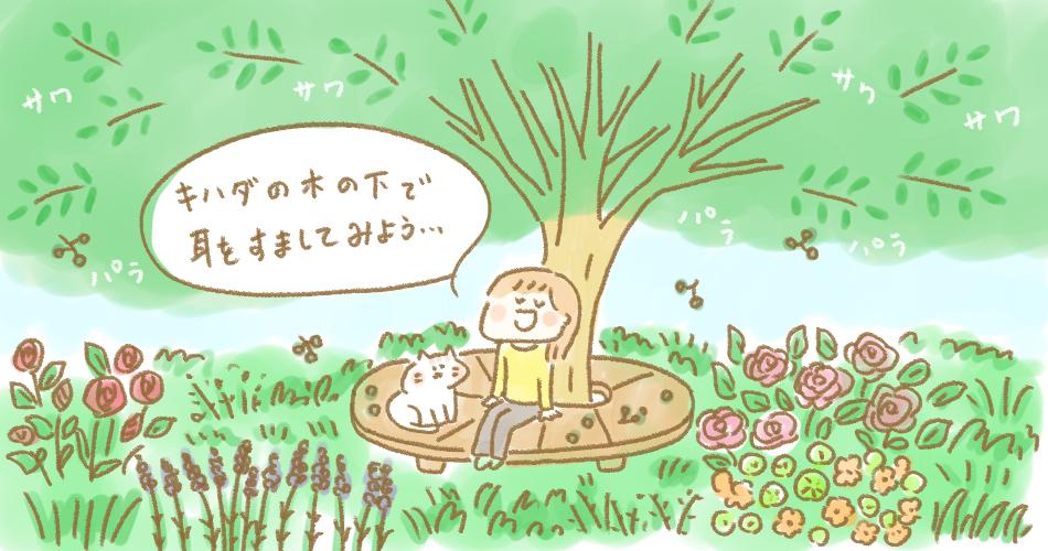 薬用ハーブ園癒しのシンボルツリー、苦~い薬木キハダ