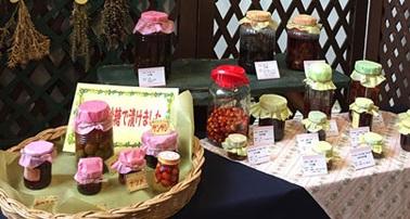 水戸市植物公園 秋の水戸藩にまつわる薬草展 講演会「薬酒を楽しむ」一覧画像