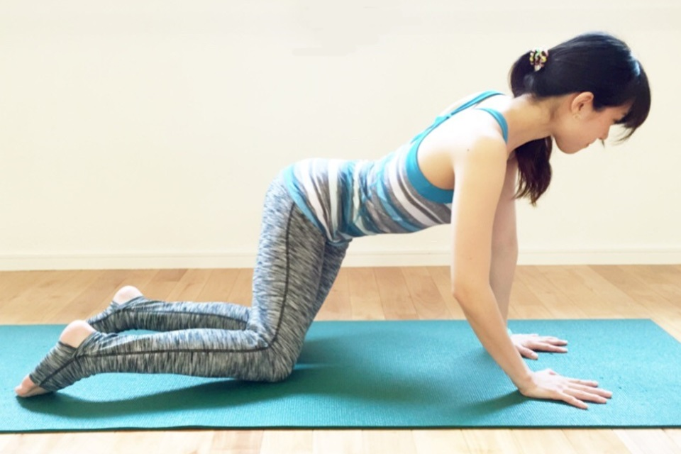 8-shaped-yoga-4.jpg