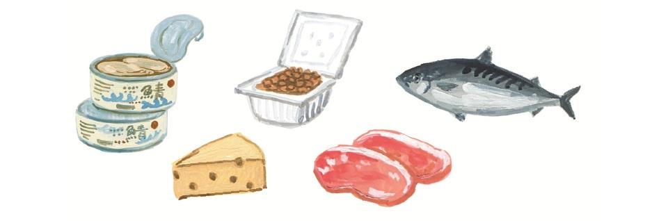 たんぱく質を含む食材