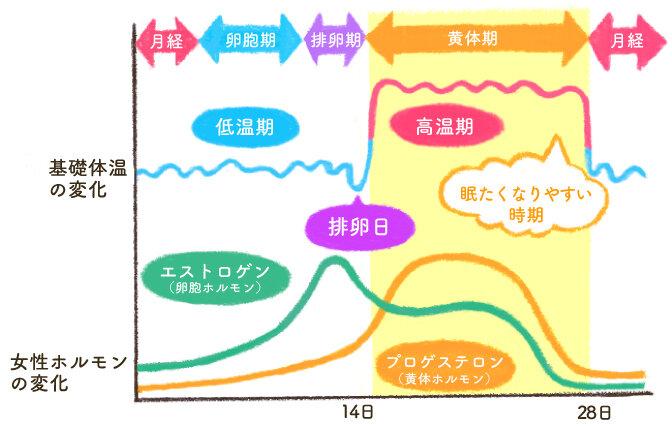 body_temperature_graph.jpg