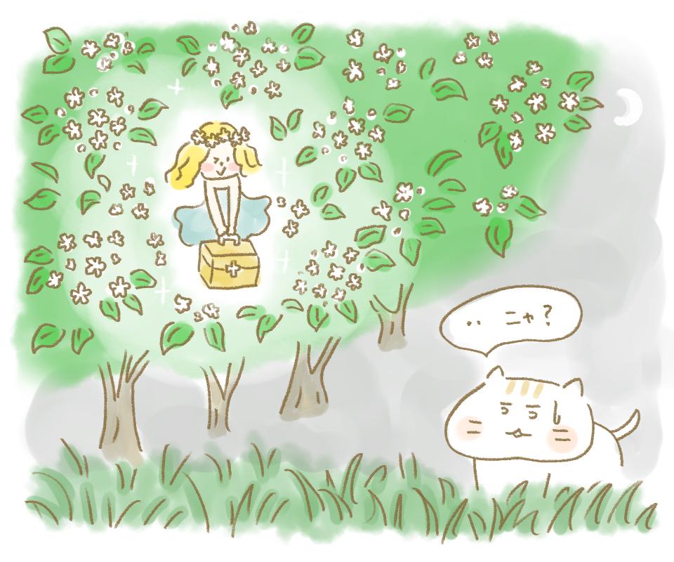 elderflower_fairy.jpg