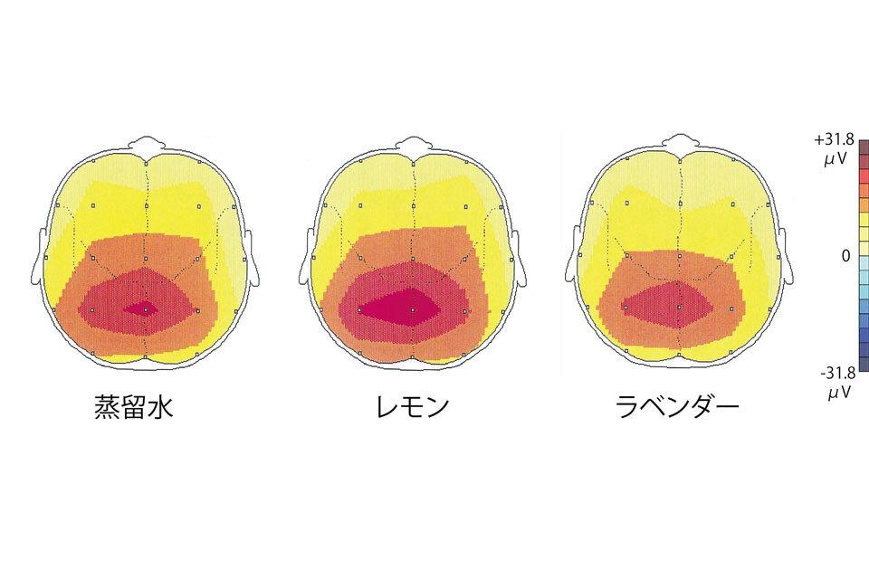 脳波の実験結果