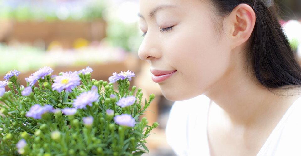 香りの効果で脳の疲労を回復!嗅覚が脳に与える影響と日常での楽しみ方