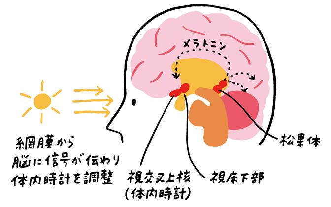 haru03_2.jpg