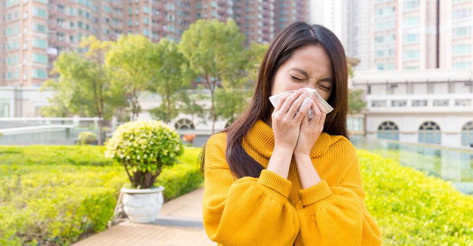 医師が教える花粉症対策!薬だけに頼らないハーブを使ったセルフケア