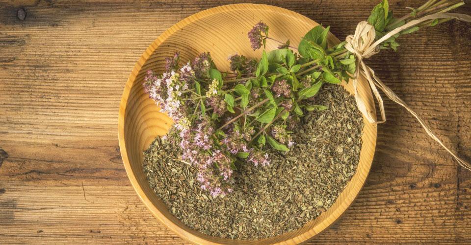 殺菌・抗菌作用がある「天然の抗生剤」オレガノの効能と使い方とは?