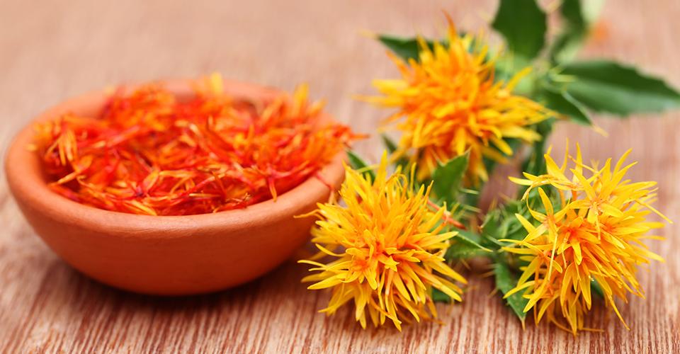 栽培が簡単!巡りに効くハーブ・紅花(ベニバナ)の種まき時期や育て方