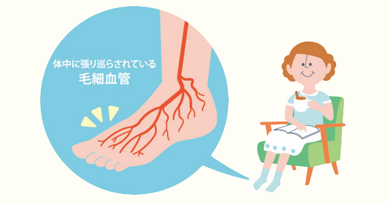 毛細血管の減少が体の不調の原因に?シナモンでゴースト血管を修復!